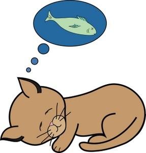 gato sonhando com peixe