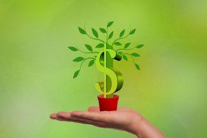 Todos tem medo de investir em um negócio, mas essa é uma ação inevitável para quem deseja crescimento. Ter todas as informações necessárias antes de aplicar seu dinheiro é uma estratégia matadora.