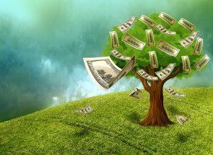 Sei que dinheiro não dá em árvores e que a situação econômica requer atenção, mas isso não pode ser o impedimento para que você deixe de empreender online.